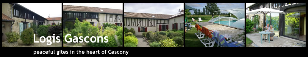 logis gascony gite complex with swimming pool and gardens close to merciac, gers, gascony southern france